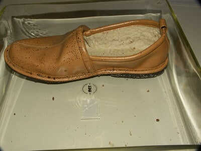 Bed Bug Infestation in Shoes