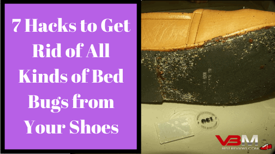 How to Get Rid of Bed Bugs from Your Shoes